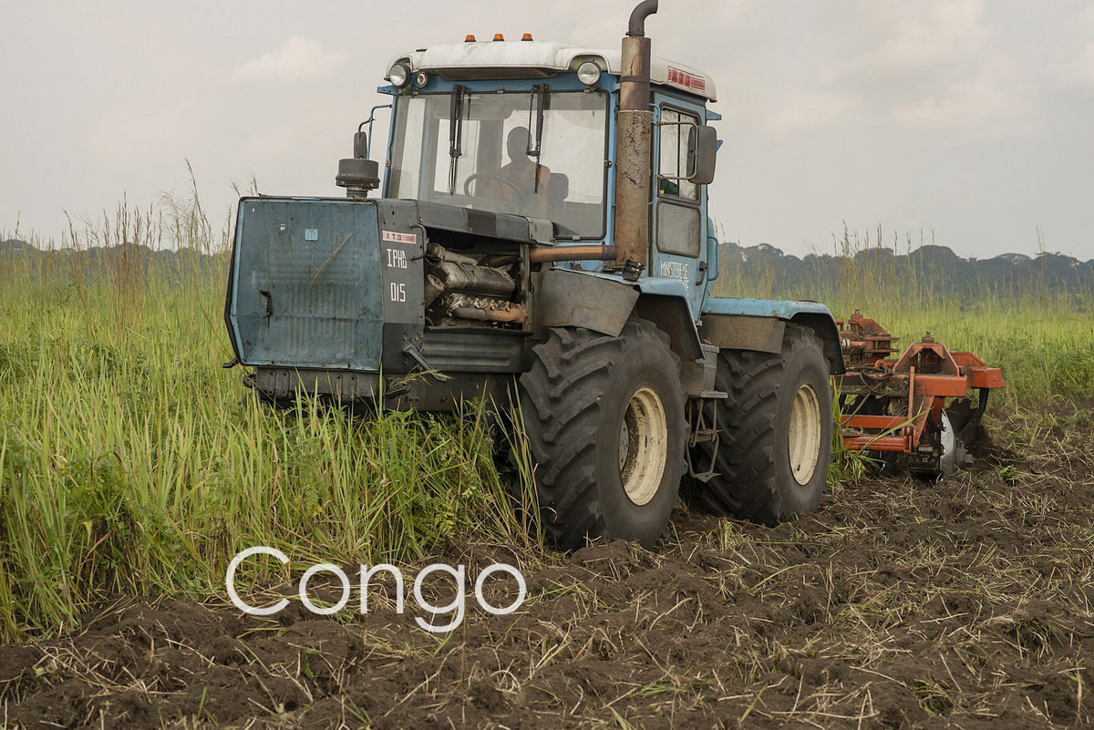 Congo_agriculture-1.jpg